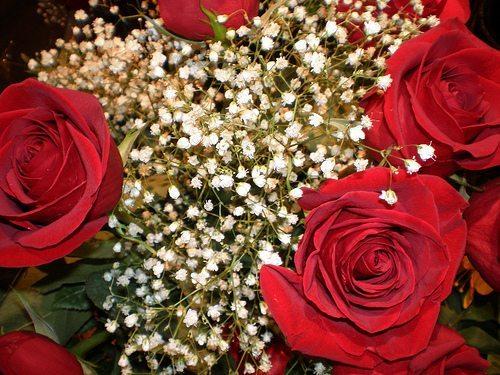 Valentine's Day romantic gift